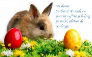 Felicitări cu ocazia sărbătorii de Paște